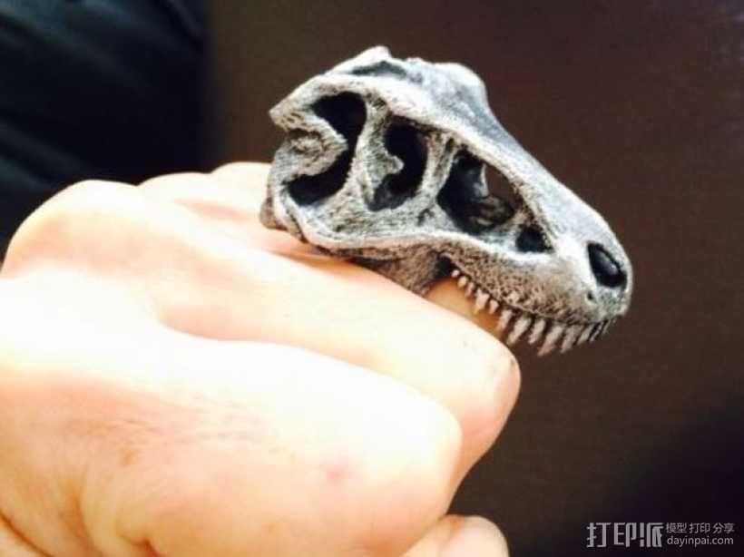 恐龙戒指 3D模型  图1