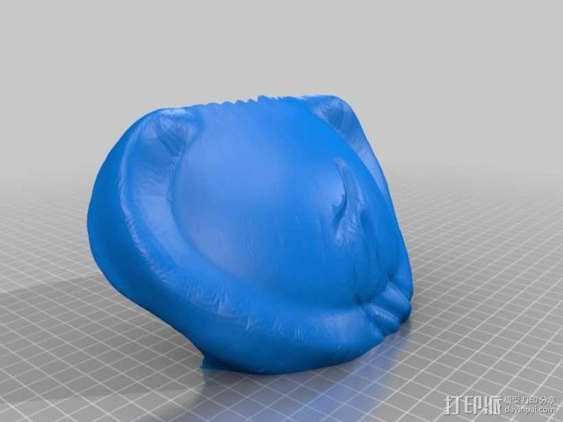 电影《铁血战士》面具 3D模型  图6