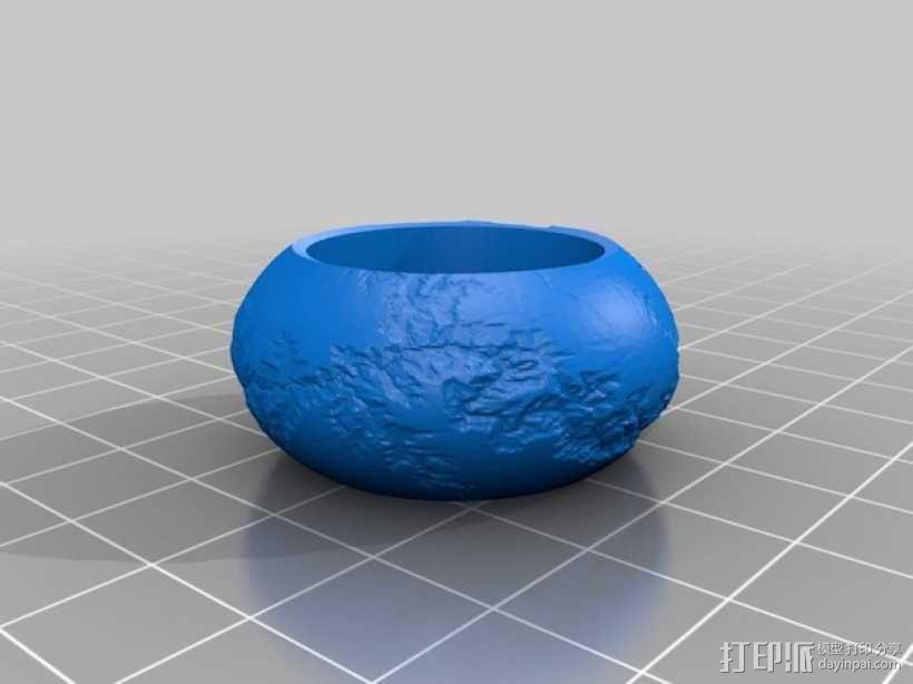 个性化指环 3D模型  图2