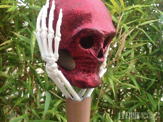 骷髅头头骨 3D模型  图1