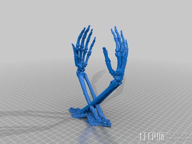 骷髅头头骨 3D模型  图2