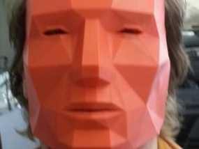 低面数 面具 3D模型