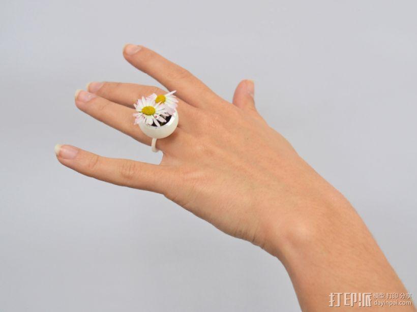 珍珠戒指 3D模型  图1