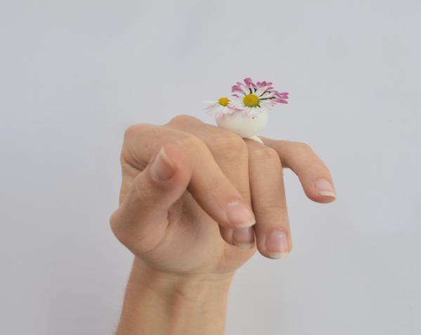 珍珠戒指 3D模型  图4