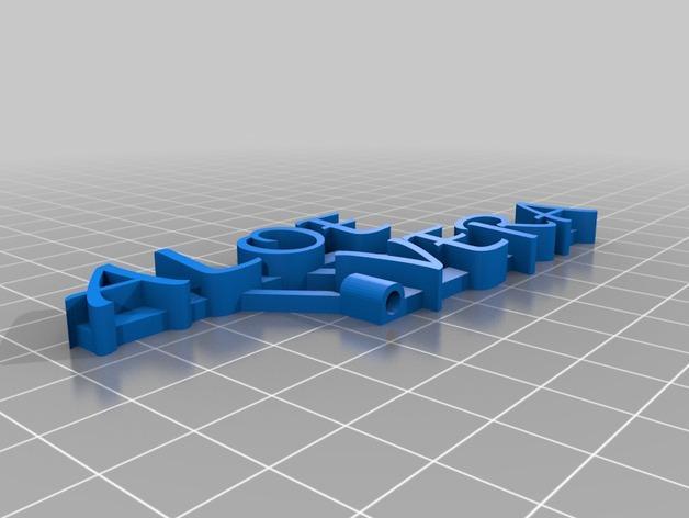 Aloevera芦荟  3D模型  图2