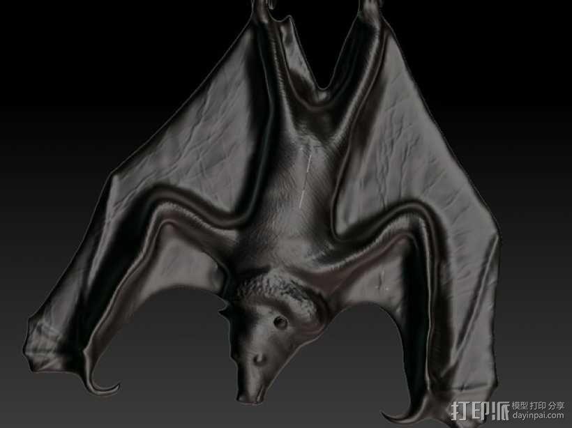 蝙蝠 项链坠 3D模型  图1