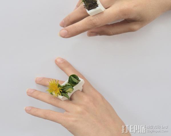花盆戒指 3D模型  图2