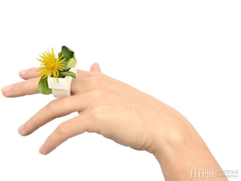 花盆戒指 3D模型  图1