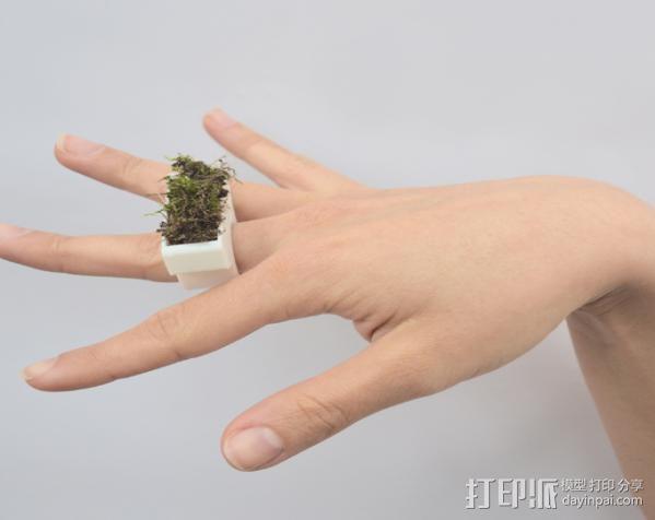 花盆戒指 3D模型  图4