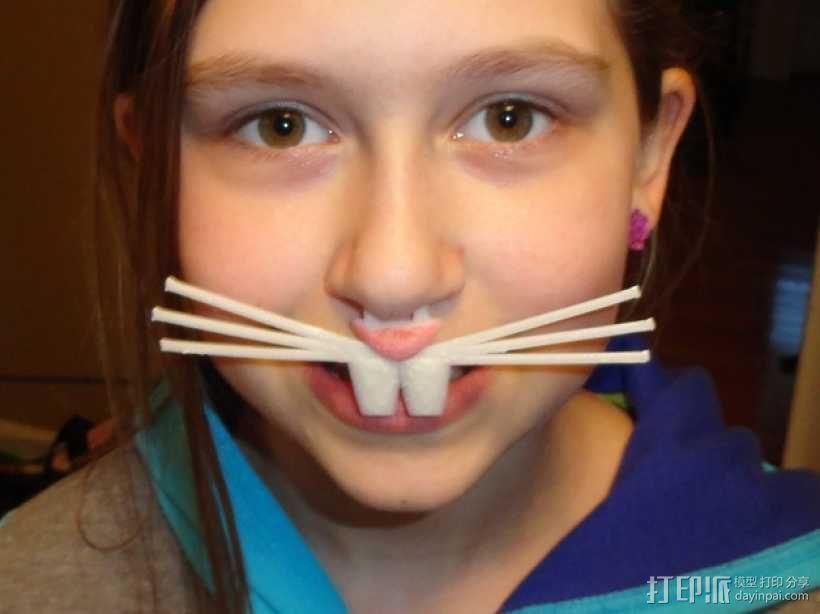 兔鼻子 3D模型  图1