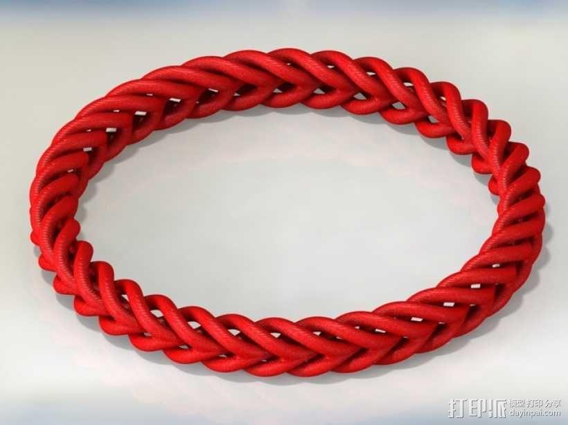 编织结构环 3D模型  图2