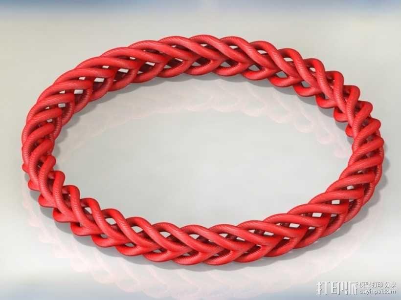 编织结构环 3D模型  图3