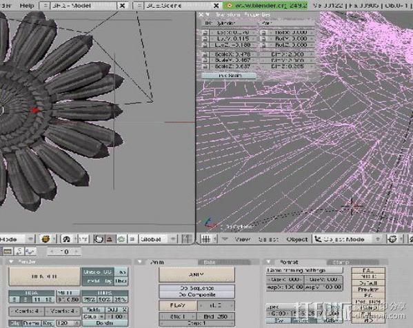 太阳花 3D模型  图3