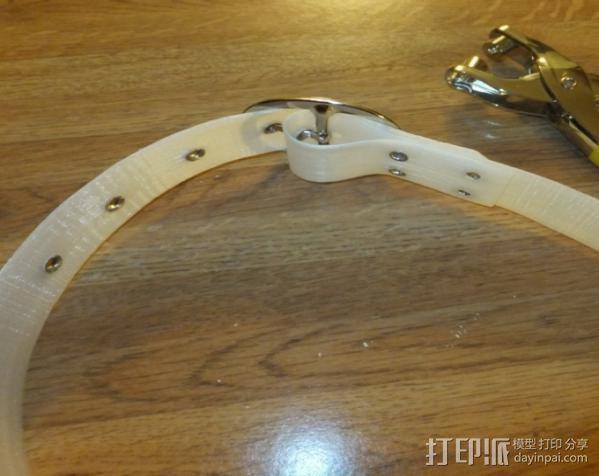 漂亮的尼龙皮带 3D模型  图3