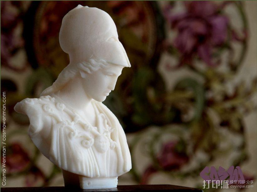 雅典娜韦莱特里 3D模型  图3