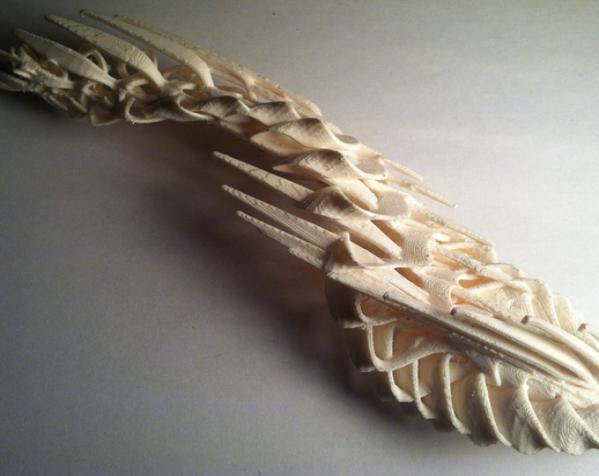小鸟 3D模型  图1