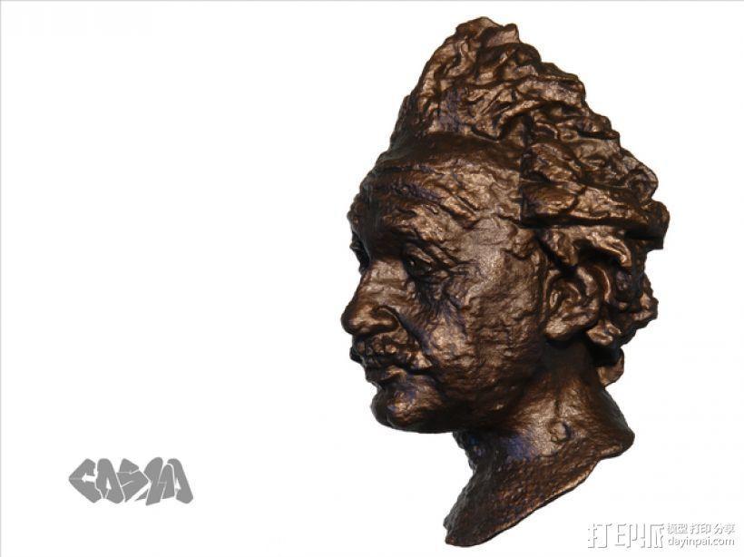 爱因斯坦头像 3D模型  图1