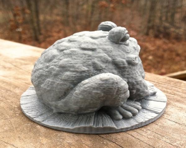 园子里的蟾蜍  3D模型  图3
