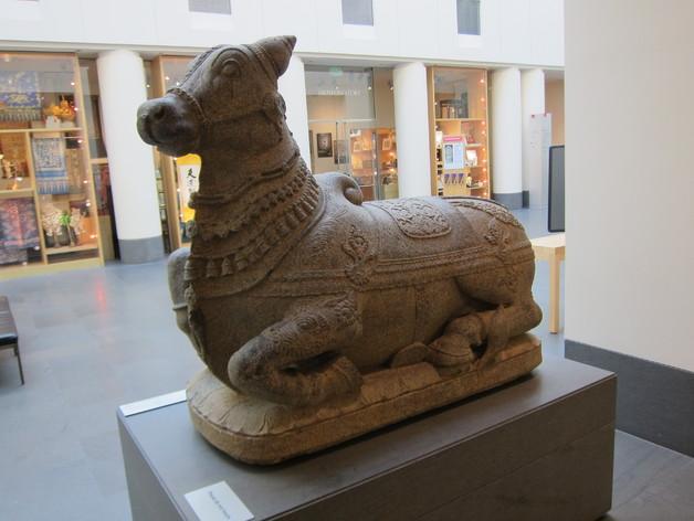 大公牛Nandi 3D模型  图2