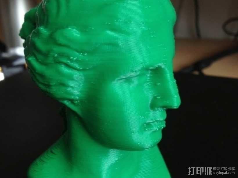 维纳斯头像 3D模型  图1