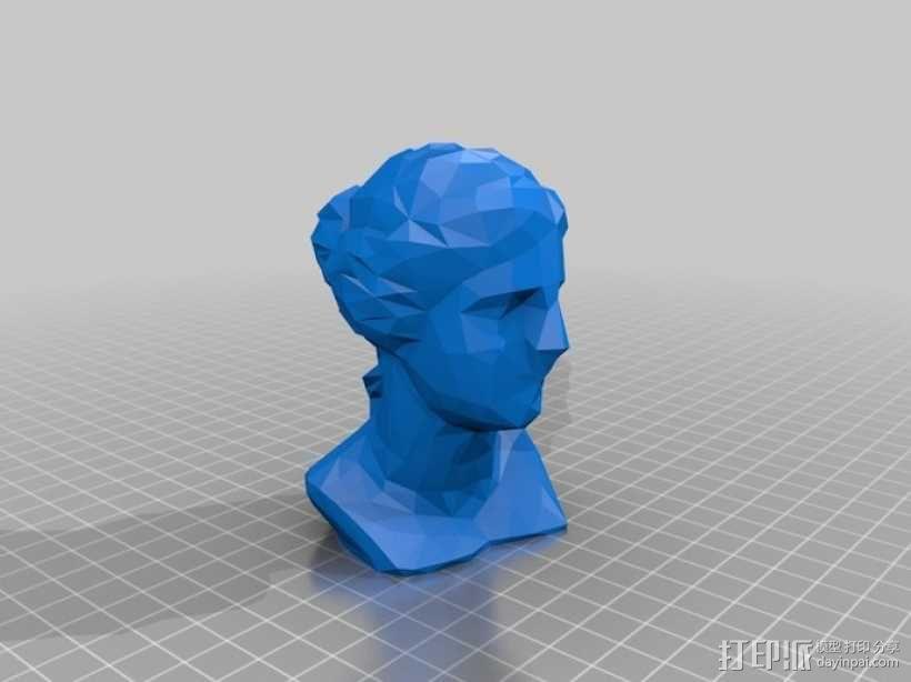 维纳斯头像 3D模型  图2