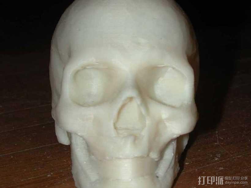 骷髅头 3D模型  图4