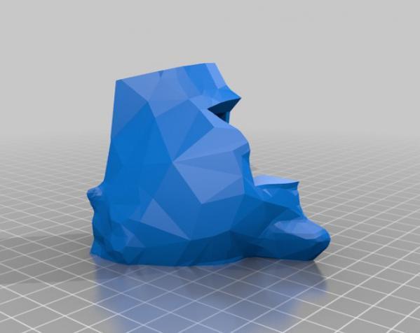 Makerbot创始人Bre Pettis头像 3D模型  图8