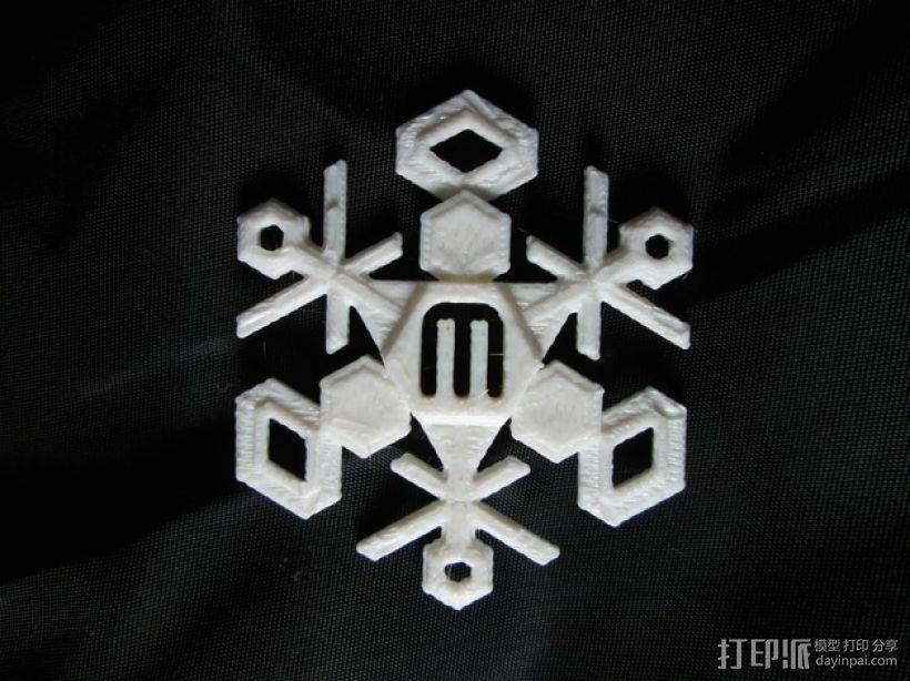 雪花 3D模型  图2