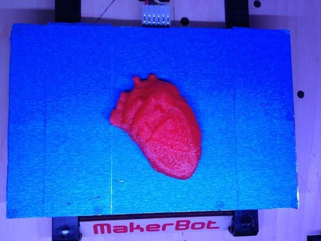 心脏解剖雕塑 3D模型  图2