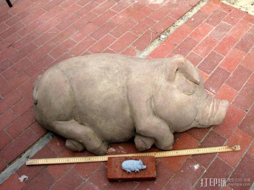 睡着的猪 3D模型  图1