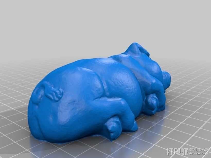 睡着的猪 3D模型  图2