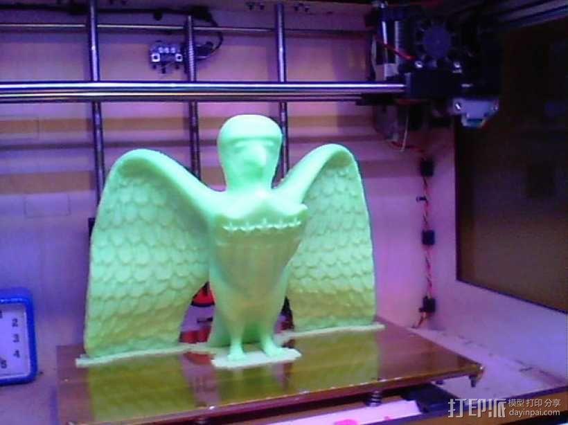 美国老鹰 3D模型  图2