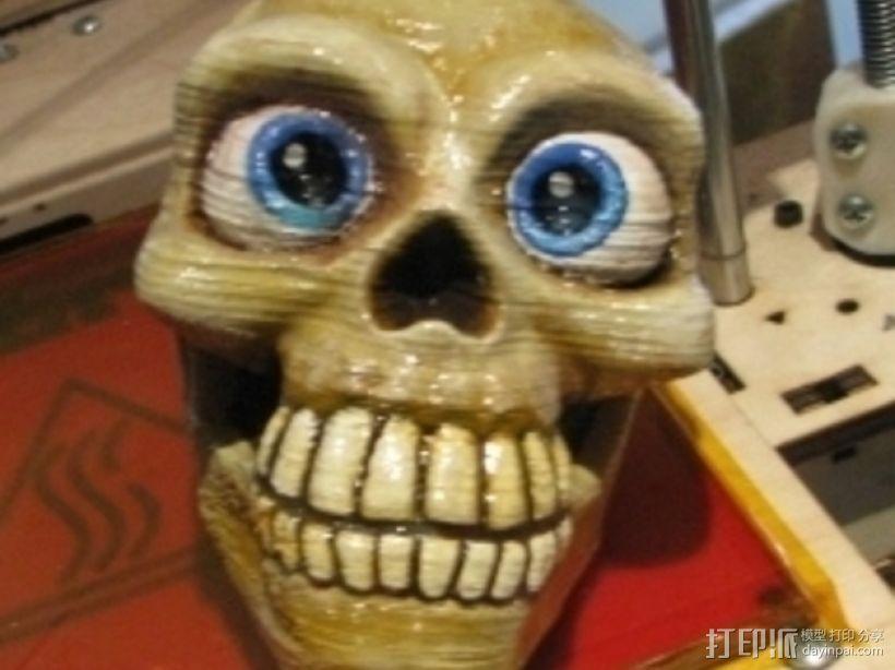 骷髅头骨 3D模型  图3