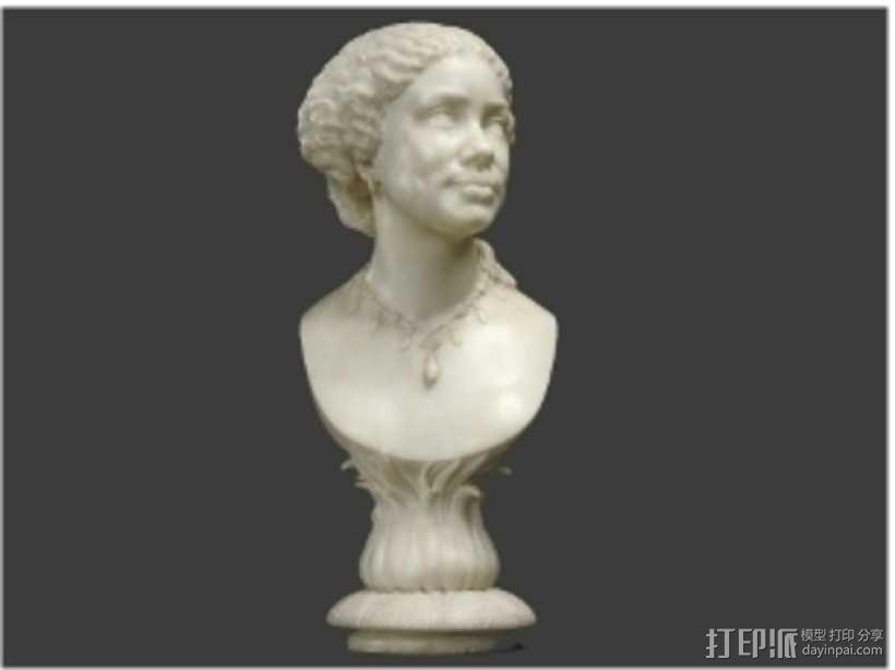 玛丽·希科尔头像 3D模型  图2