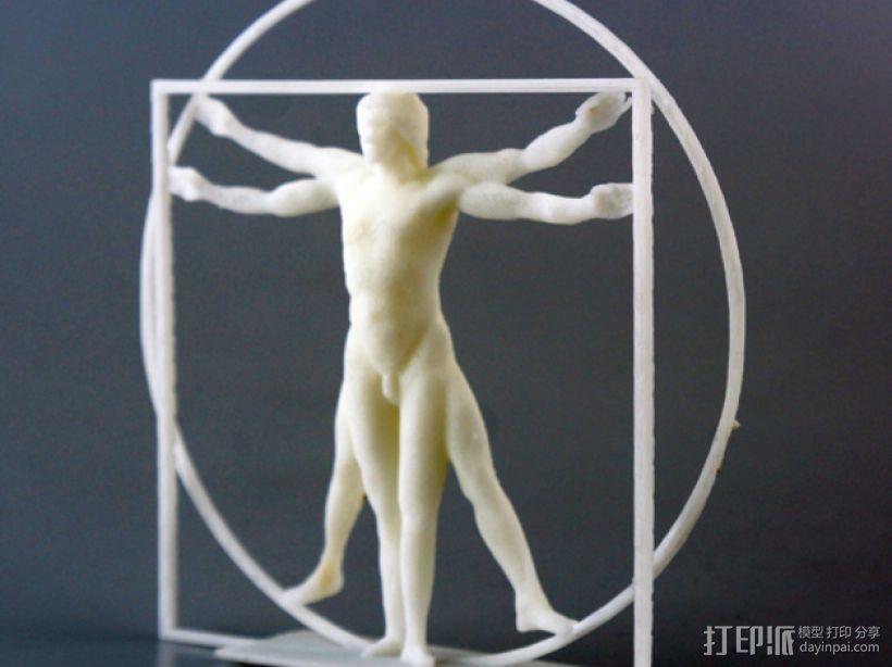 维特鲁威人 模型 3D模型  图1
