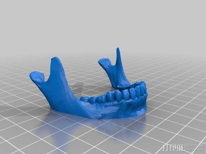 人头骨 3D模型  图9