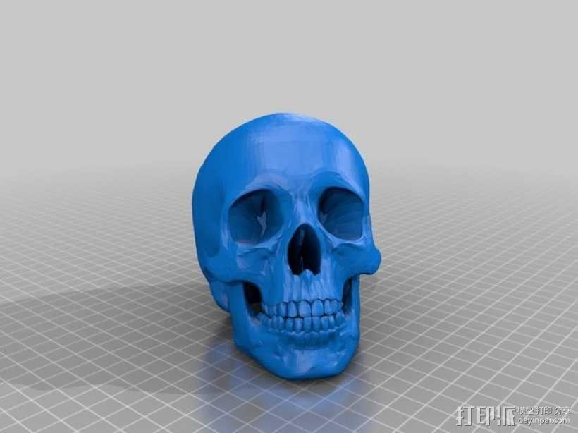人头骨 3D模型  图8