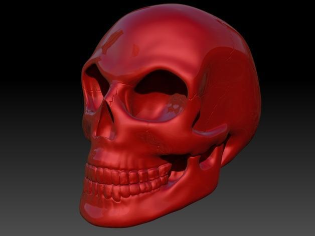 头骨 模型 3D模型  图2