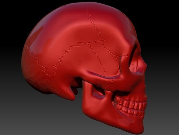 头骨 模型 3D模型  图6