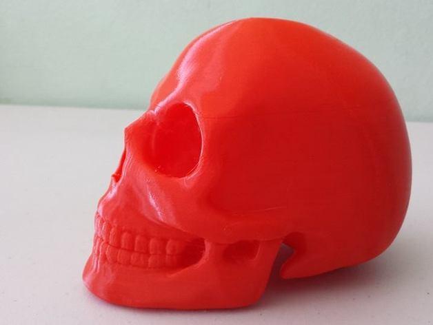 头骨 模型 3D模型  图5