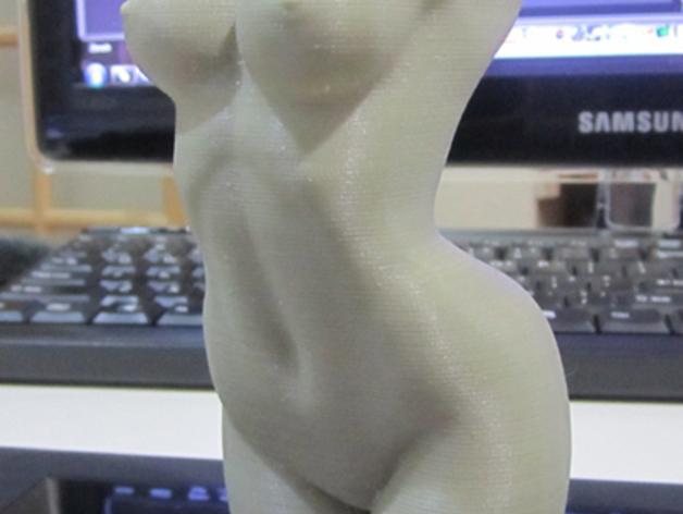 人体躯干 模型 3D模型  图4
