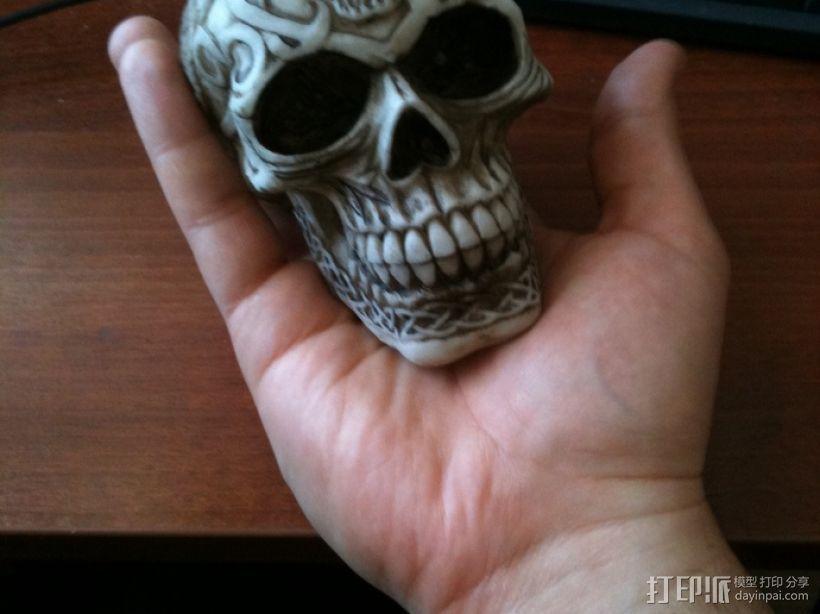 凯尔特人 头骨 3D模型  图1