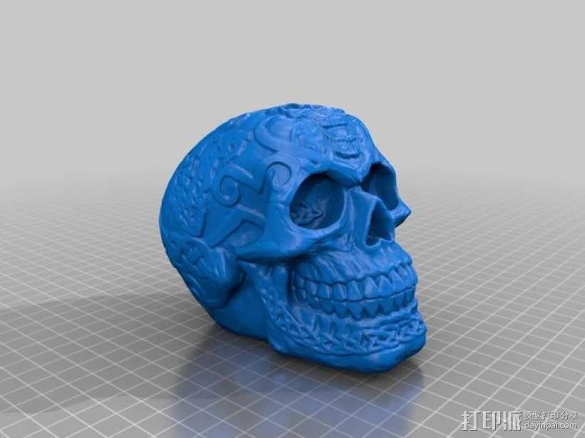 凯尔特人 头骨 3D模型  图2