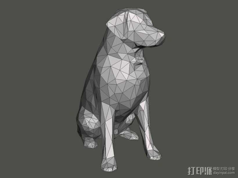 低面数 拉布拉多犬 模型 3D模型  图3
