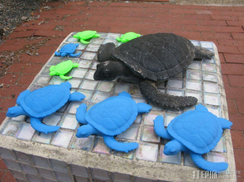 花园龟 3D模型  图1