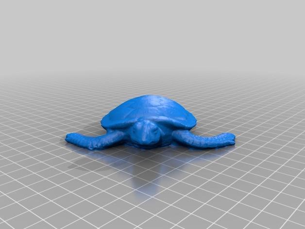 花园龟 3D模型  图2