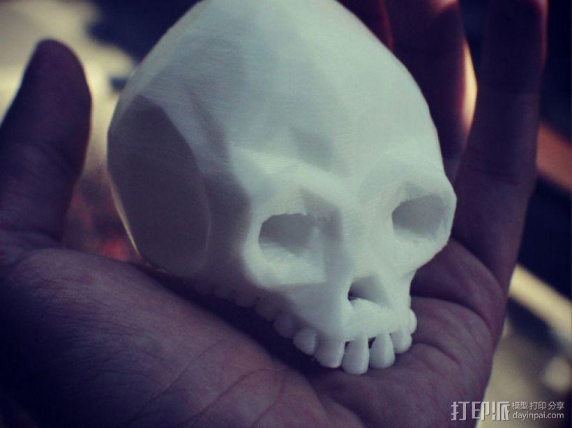 低面数头骨 3D模型  图1