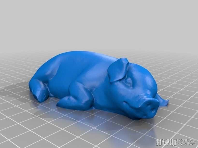 熟睡的猪 模型 3D模型  图1