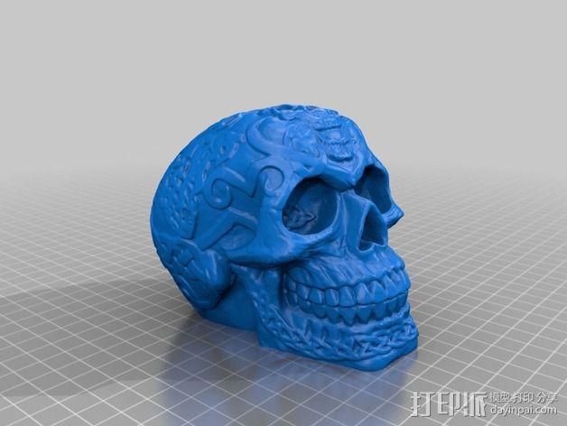 凯尔特头骨 模型 3D模型  图3