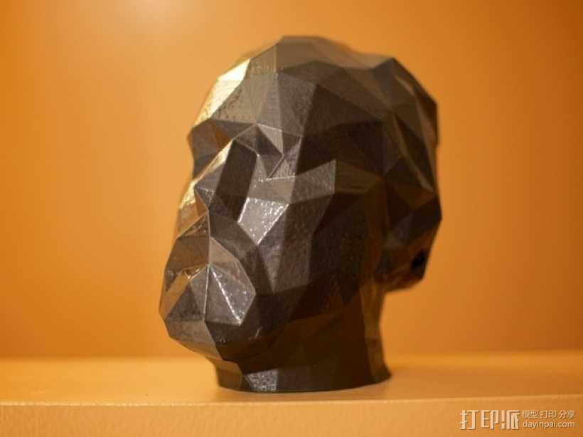 道格拉斯·柯普兰 3D模型  图1